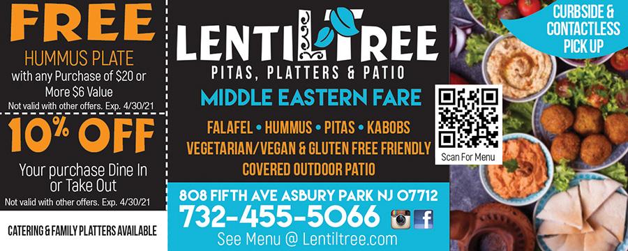 Lentil Tree